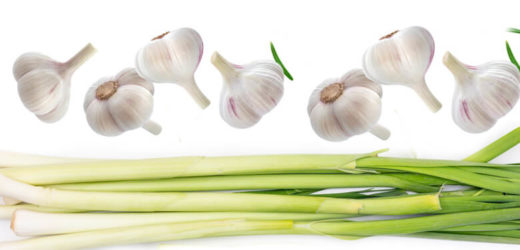 Incredible Health Benefits of Garlic