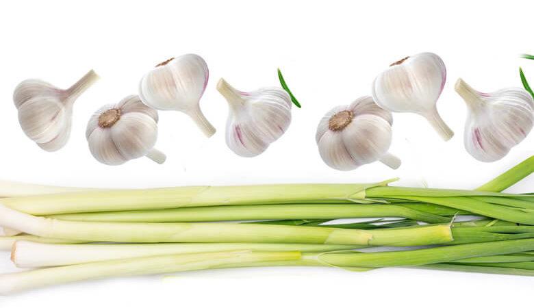 Incredible Health Benefits of Garlic