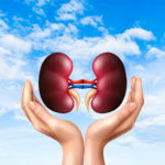 How to Take Care of Your Kidneys: 5 Best Herbs for Cleansing Your Kidneys
