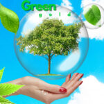 Green Gold is The Best Investment: Earns Environment That is Worth Living In